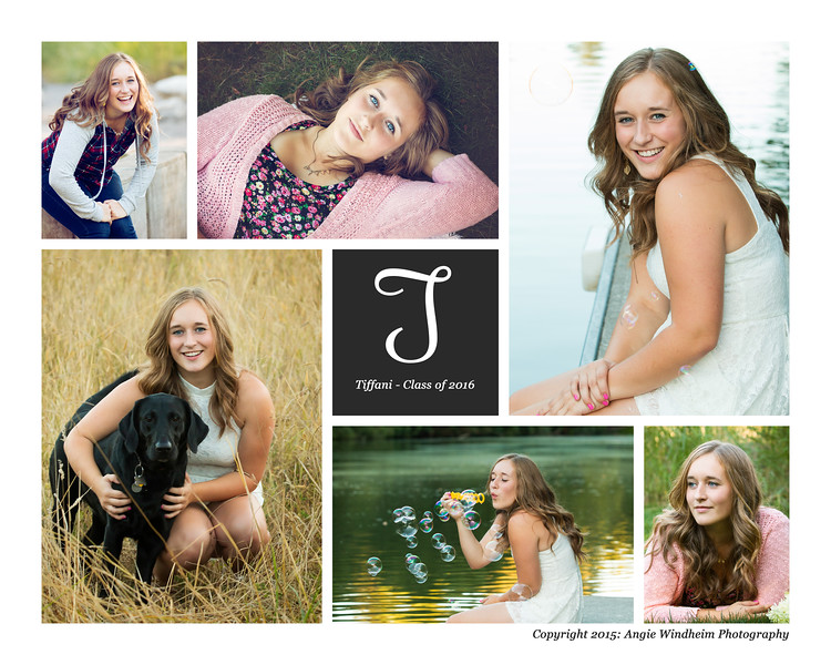 Tiffani Williams, Senior Photos, Sherwood photography, Angie Windheim Photography