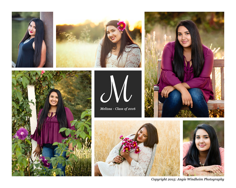 Melissa Alvares Sherwood Senior Portraits by Angie Windheim Photography
